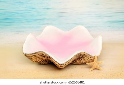 Digital Photography Background Of Mermaid Clam Shell Prop On Beach Ocean Backdrop