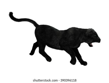 Digital render of a big cat black panther hunting isolated on white background
