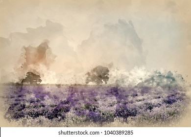 Digital watercolor painting of Stunning dramatic foggy sunrise landscape over lavender field in English countryside