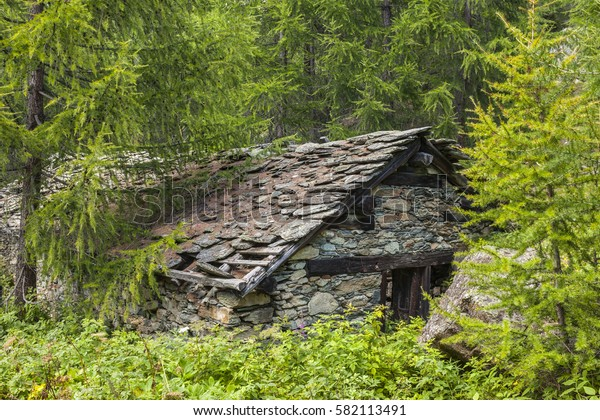 Dilapidated mountain hut in the woodland. Monte Rosa Massif, Ayas valley, Italy