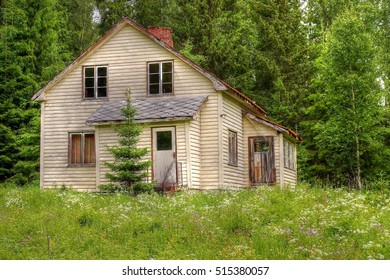 The dilapidated old house in the forest