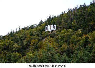 Dildo, a small fishing village in Newfoundland, Town sign on hillside.