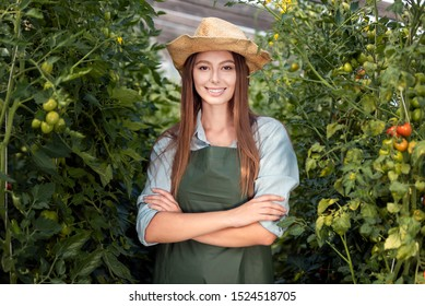 Diligent farmer girl posing in a hothouse among tomato rows
