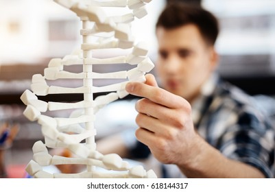 Diligent student learnign DNA model