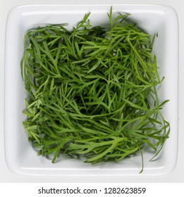 Dill (Anethum graveolens) is a herb in the celery family Apiaceae. Dill is widely grown in Europe and Asia where its leaves and seeds are used as a herb or spice for flavoring food.