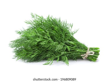 Dill aromatic herb closeup isolated on white background