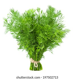 Dill herb closeup isolated on white background