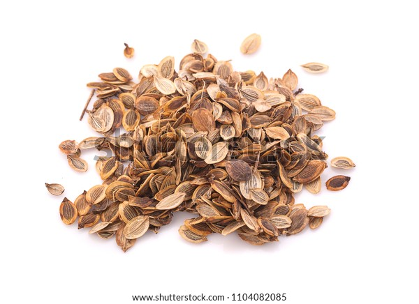 Dill seed on white isolated background