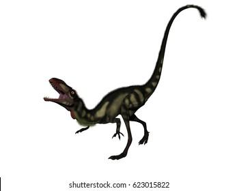 dilong dinosaur in white background - 3D rendering