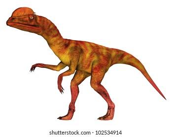 Dilophosaurus Computer generated 3D illustration