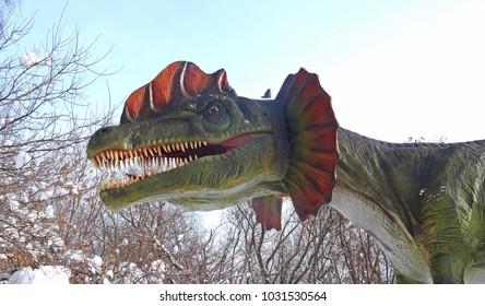 Dilophosaurus Dinosaur in the park. Winter park.