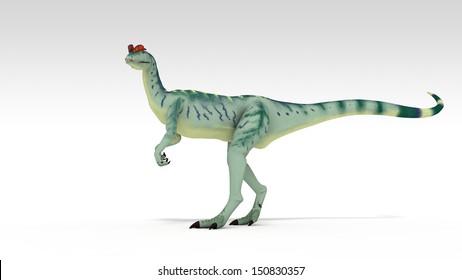 dilophosaurus isolated