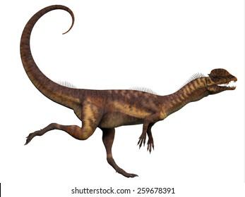 Dilophosaurus Profile - Dilophosaurus was a carnivorous theropod dinosaur that lived in the Jurassic Period of Arizona.