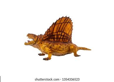 Dimetrodon  Dinosaur on white background .