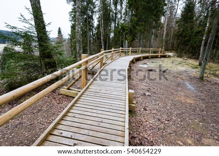 diminishing perspective wooden footbridge forest tourist stock photo