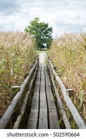 Diminishing perspective of wooden suspension footbridge over river in autumn