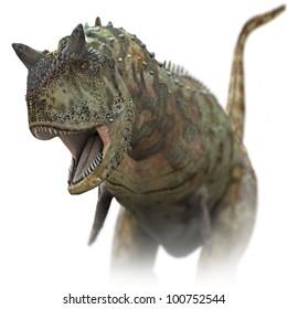 Dinosaur Carnivore close up