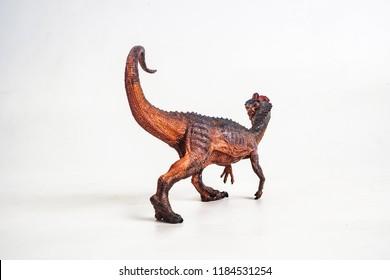 dinosaur , Dilophosaurus on white background .