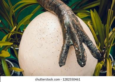 Dinosaur foot wild nature predator protecting eggs in nest