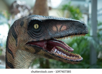Dinosaur with growls open mouth.closeup