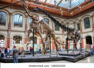 The Dinosaur Hall of the Natural History Museum (Museum für Naturkunde) in Berlin, Germany - 20/04/2019