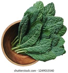 Dinosaur Kale  organic on wood bowl isolated from a white background.black kale, italian kale, tuscan kale, lacinato