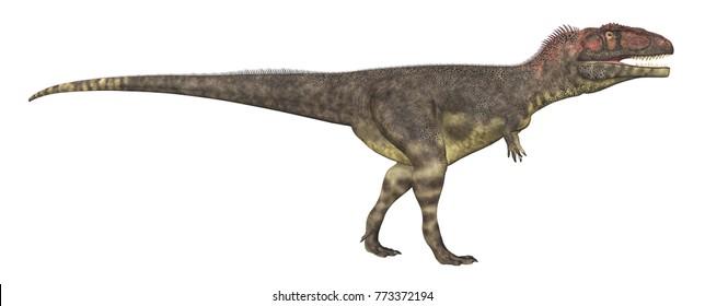 Dinosaur Mapusaurus isolated on white background Computer generated 3D illustration