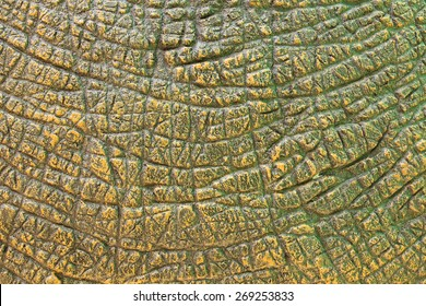 Dinosaur Skin Texture Images Stock Photos Amp Vectors