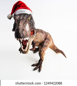 dinosaur , T-rex with Christmas hat  , Tyrannosaurus on white background
