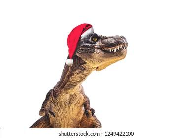 dinosaur , T-rex with Christmas hat  , Tyrannosaurus on white background