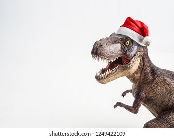 dinosaur , T-rex with Christmas hat  , Tyrannosaurus on white background .