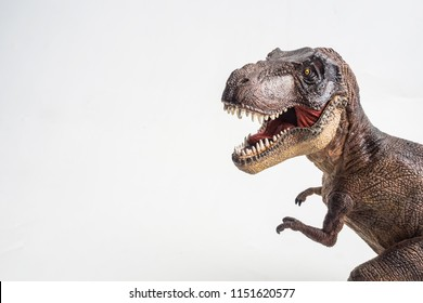 dinosaur , T-rex  , Tyrannosaurus on white background