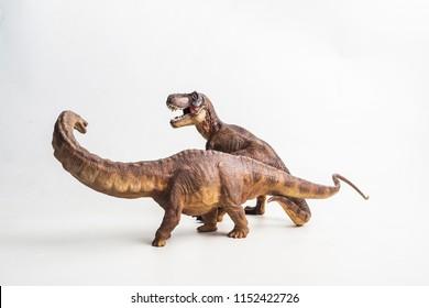 dinosaur , Tyrannosaurus with Apatosaurus  on white background .