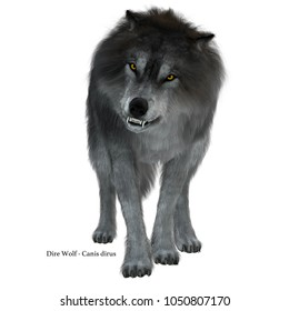 Dire Wolf on White with Font 3d illustration - The Dire Wolf was a prehistoric carnivore that lived in North and South America during the Pleistocene Period.