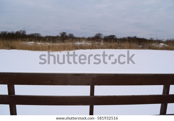 Direct view on the wooden planks of the boardwalk and nature in winter