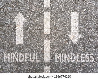 Direction to Mindful Vs Mindless