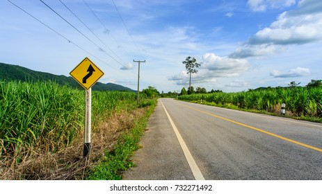 Direction Rural Road Warning Signage on blue sky background with blank for text.