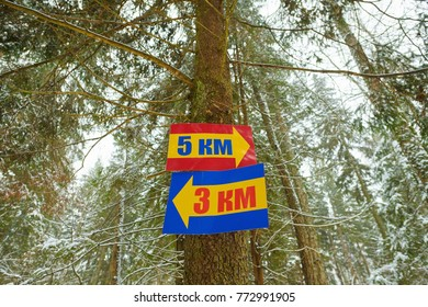 Direction signs with yellow arrows to three and five kilometers on a winter forest background