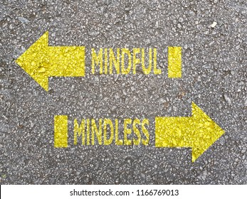 Directions to Mindful vs Mindless