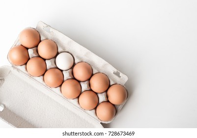 Directly above view of 11 brown eggs and 1 white egg in cardboard box on white table with copy space - odd one out concept