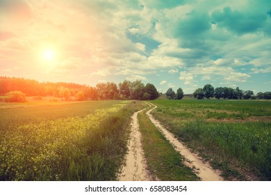 Dirt car road in the field with blue cloudy sky at sunset. Beautiful evening nature, rural landscape, springtime