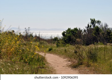A dirt path for hiking and jogging features beautiful views of the coastline and ocean