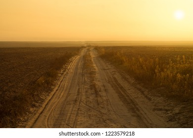 Dirt road along the field and yellow sky in the autumn morning
