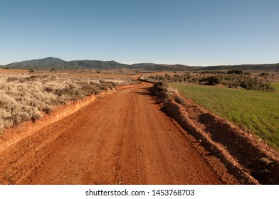 Dirt road between grass fields