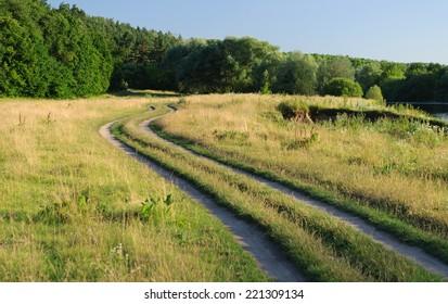 dirt road between the trees