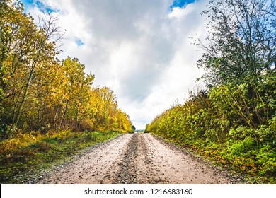 Dirt road in the fall with tree in autumn colors by the roadside