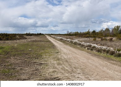 Dirt road in the great plain grassland Stora Alvaret on the swedish island Oland