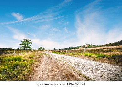 Dirt road with green grass by the roadside under a blue sky ind the summer