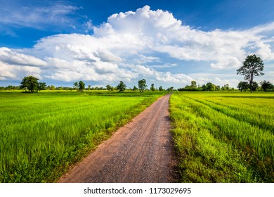 Dirt road in the green rice field with beautiful clouds, countryside of Thailand