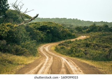 A dirt road in the Isimangaliso National Park in Southafrica